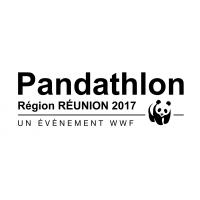 Logo PANDATHLON 2017