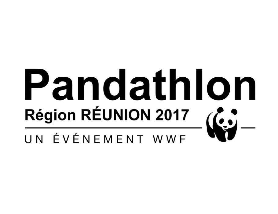Affiche PANDATHLON 2017