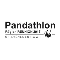 Logo PANDATHLON 2016