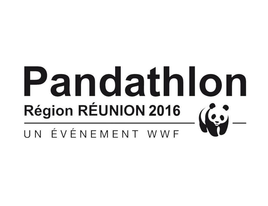 Affiche PANDATHLON 2016